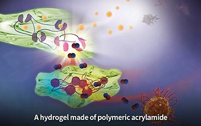 Novel hydrogel helps relieve rheumatoid arthritis