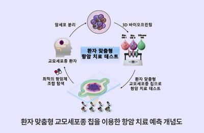 기계 조동우 교수-서울대병원 공동연구팀, 3D 세포 프린팅 기술로 난치성 뇌암 치료에 한 걸음 다가서